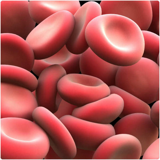 Healthy red bllod cells are essential in fighting anaemia