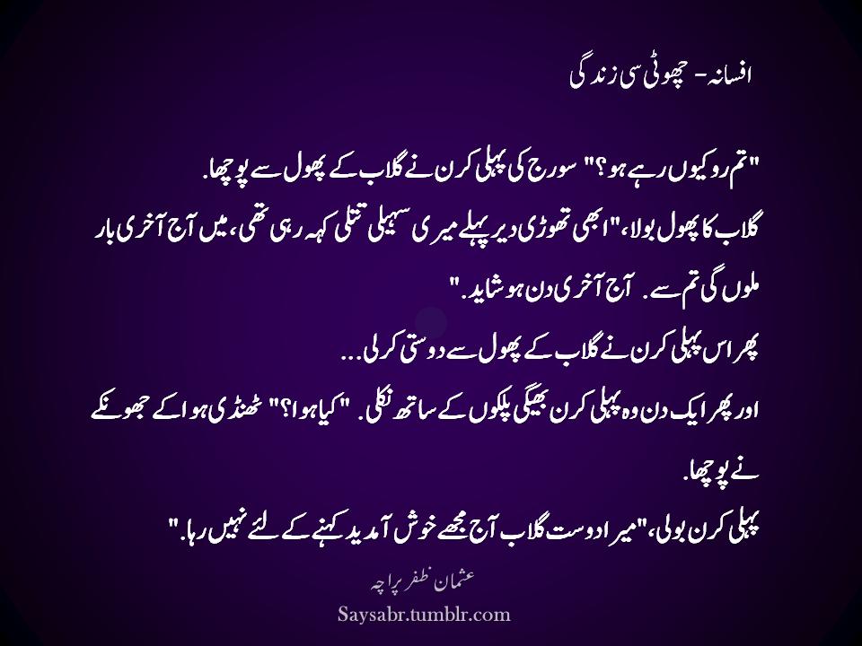 Afsana  Chhoti si zindagi Urdu quote  SayPeople